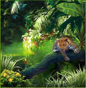 Фотообои 6 листов Джунгли оптом