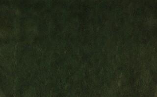 Винилискожа олива (42 м.кв.)