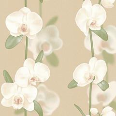 Обои «ФОКС» Орхидеи-2193