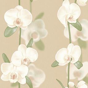 Обои «ФОКС» Орхидеи-2193 оптом