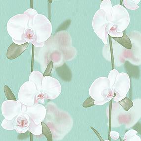 Обои «ФОКС» Орхидеи-2197 оптом