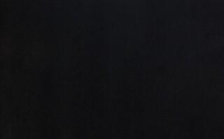 Винилискожа черный (42 м.кв.)