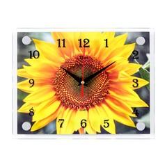 Часы настенные 2026-1127